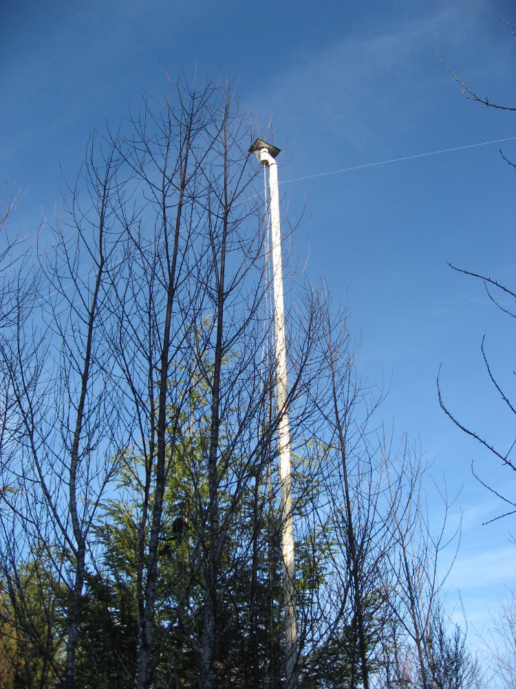Extend your Reach: 9m portable antenna mast - Project share